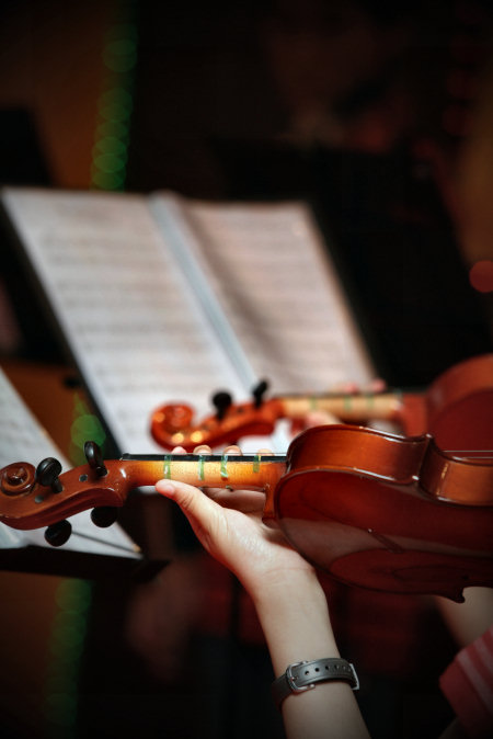 ccms-violin.jpg