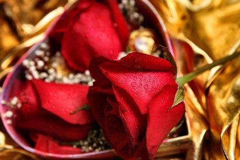 valentine2008-004.jpg