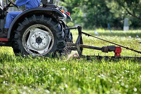 grasscutting-1.jpg
