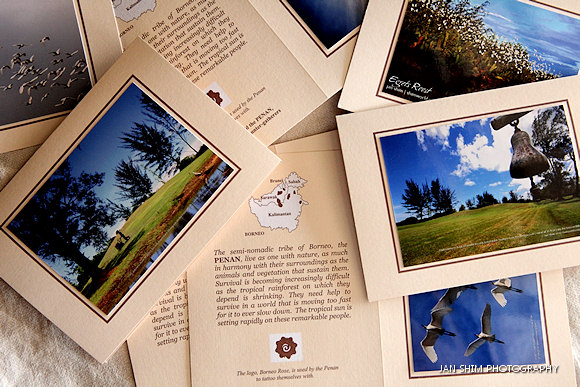 lowest-hill-penan-cards