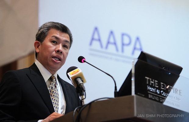 AAPA2010-295
