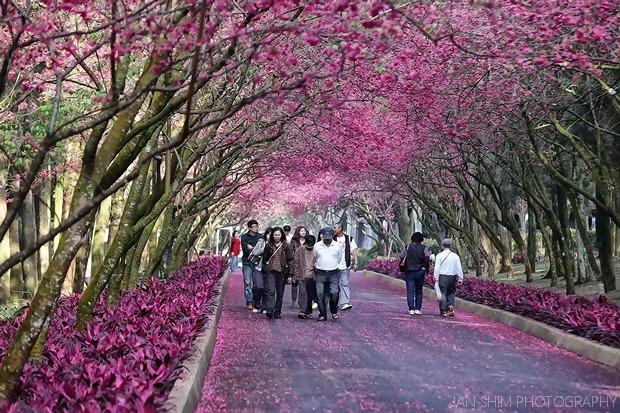 Taiwan2010-0349