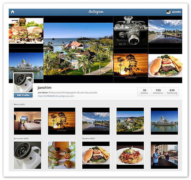 Instagram-Gallery-Wordpress